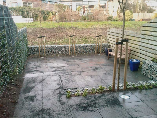 hovenier-kleine-tuin-veel-bestrating