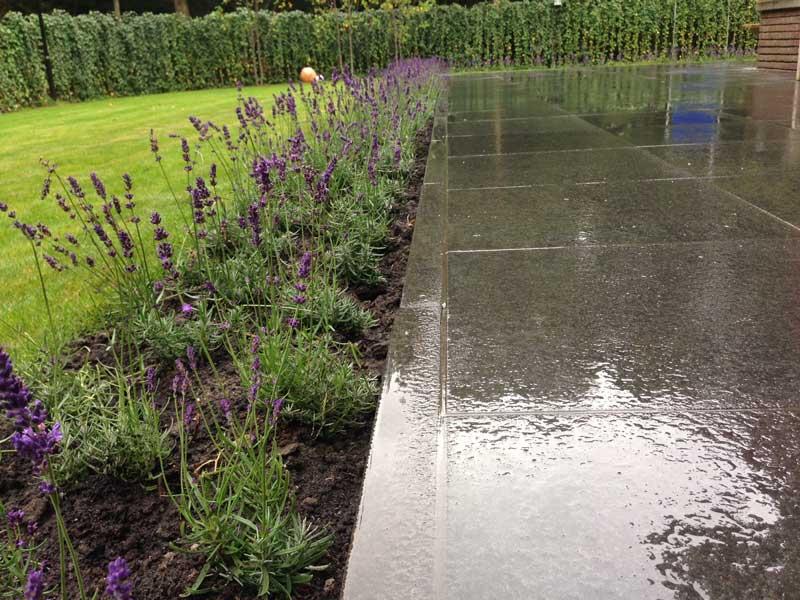tuin-met-lavendel-hovenier